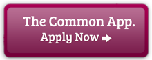 Common Application Undergraduate apply now button